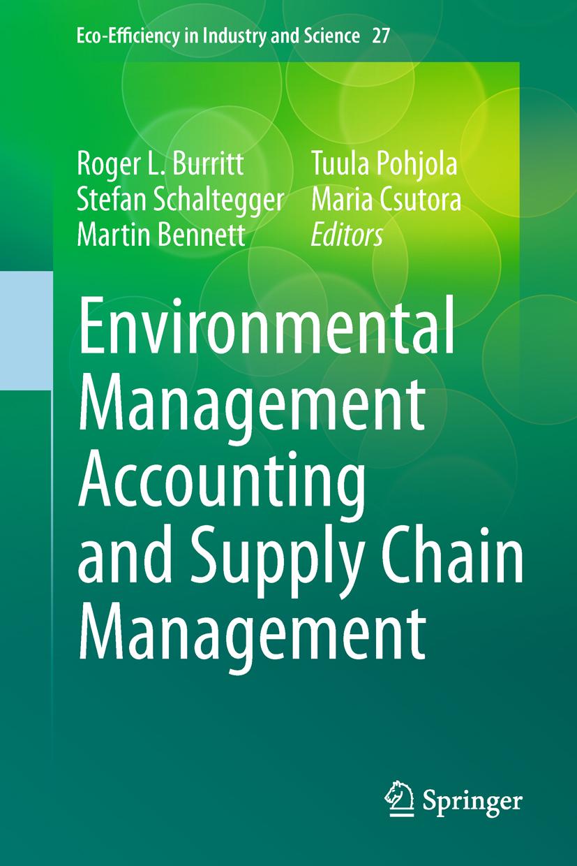 environmental accounting essay